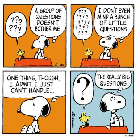 snoopy-interview